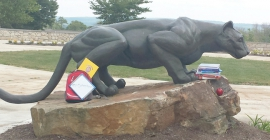 books next to mountain lion statue